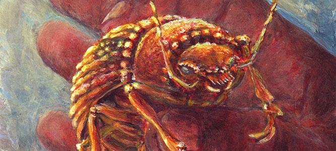 Радиоспектакль «Золотой жук»