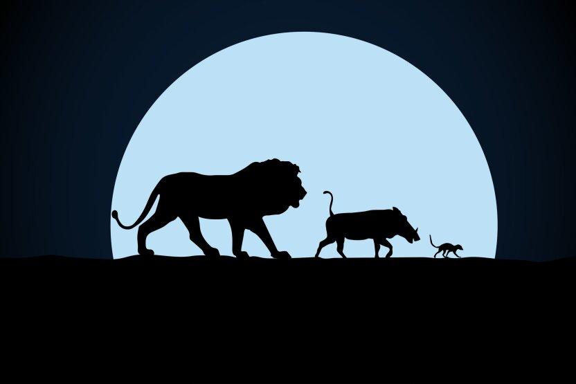 В Наро-Фоминске родители назвали ребёнка Король Лев
