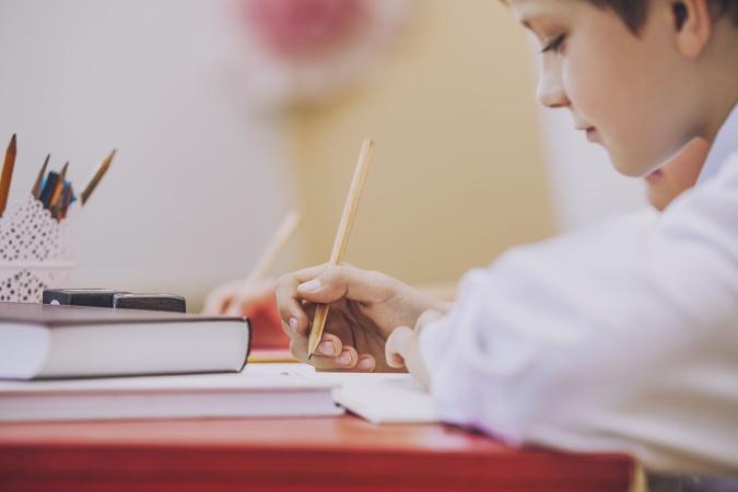 В Саратове откроется необычная школа - Предуниверсарий. Что это такое и как там учиться?