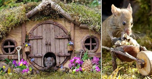 """Деревня в стиле """"Хоббита"""", в которой живут мыши. Кто ее построил?"""