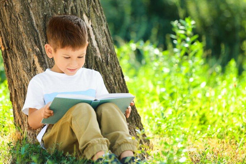 7 интересных книг для летнего чтения
