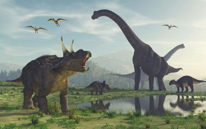 Динозавры когда-то имели крылья! Но использовали их не для того, чтобы летать