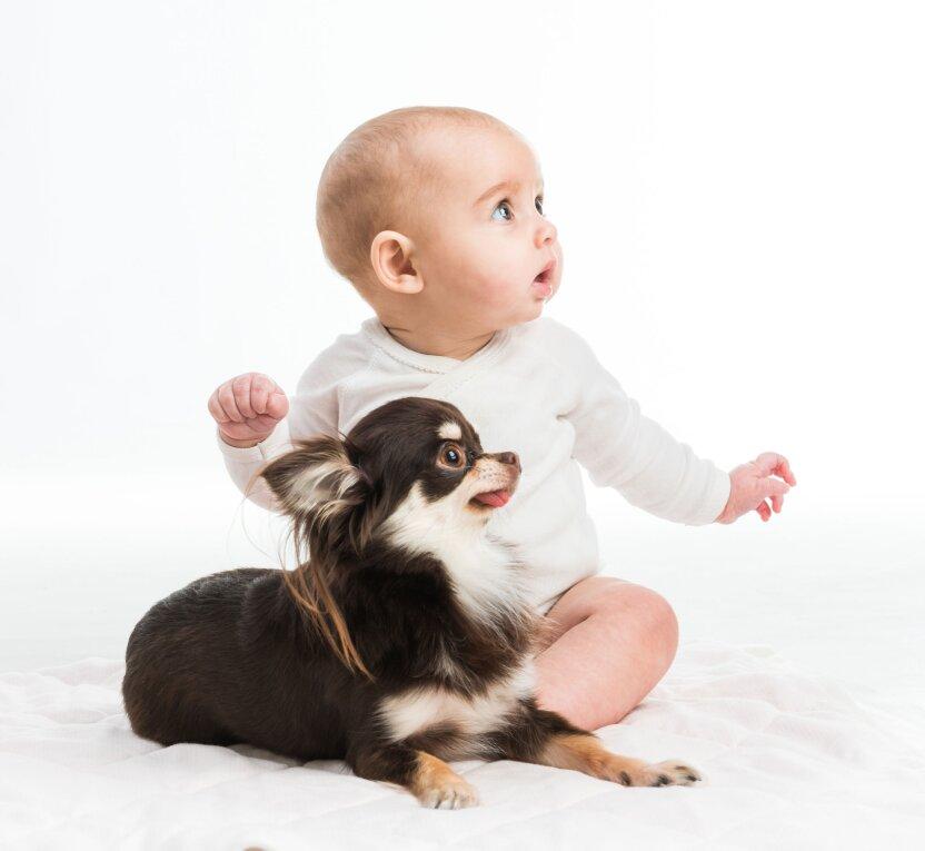 Кто лучше понимает собак – взрослые или дети?